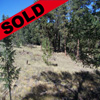 Colorado Mountain Estate Subdivision, Unit 10, Lot 1243 Thumbnail